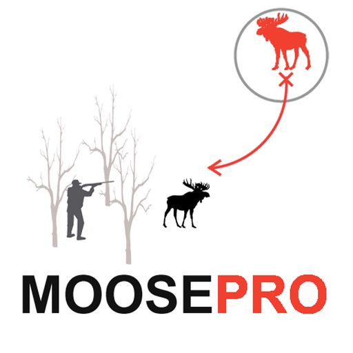 Moose Hunting Strategy - Moose Hunter Plan