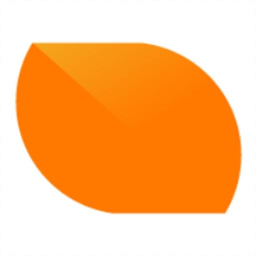 Buzinga App