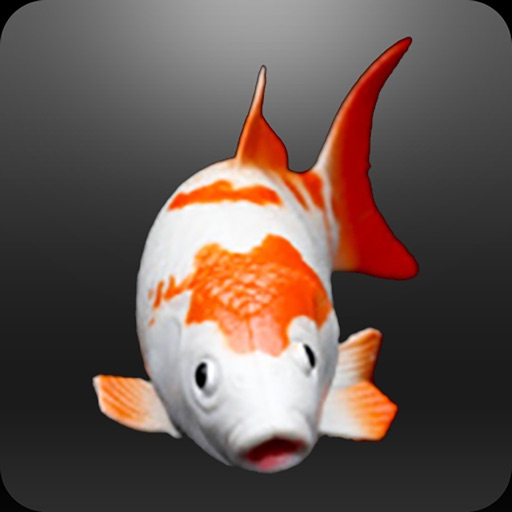 EZFishing Notebook by EasyWebFactories LLC