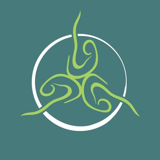 Synergy Wellness Center