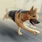 狗狗 世界 黑暗 疯狂 虚拟 时空 大战 僵尸 - 3D 宠物 猎人 模拟 游戏 免费 中文 版