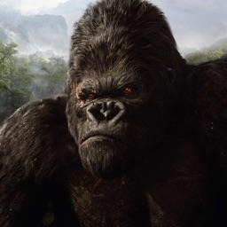 Clash of Gorilla