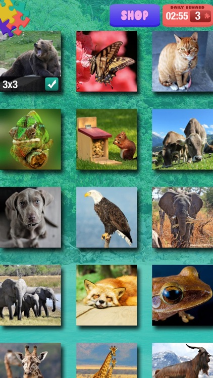 Animal Jigsaw Puzzle – Free Memory, Brain Exercise Game For Kids and Adult.s screenshot-2