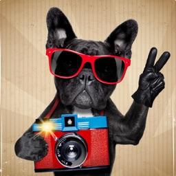 Instant Selfie HD