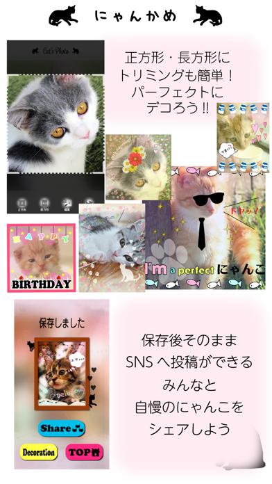 にゃんかめ 高画質マナー(無音)カメラ 〜猫のためのデコアプリ〜のおすすめ画像5