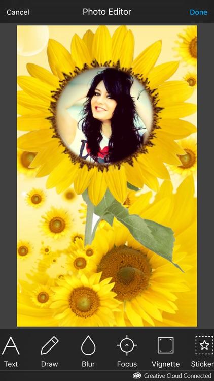 Sunflower Photo Frame screenshot-4