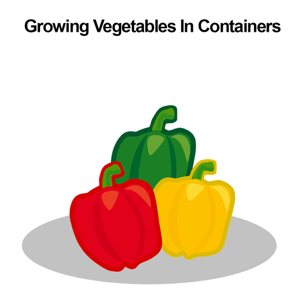 Growing Vegetables In Containers For Beginners app