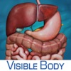 Digestive Anatomy Atlas: Essential Reference for Students and Healthcare Professionals - iPhoneアプリ
