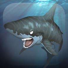 Activities of Big Shark Jetpack Ride: Dream World Adventure