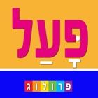Verbos y conjugaciones en hebreo | PROLOG 2017 icon