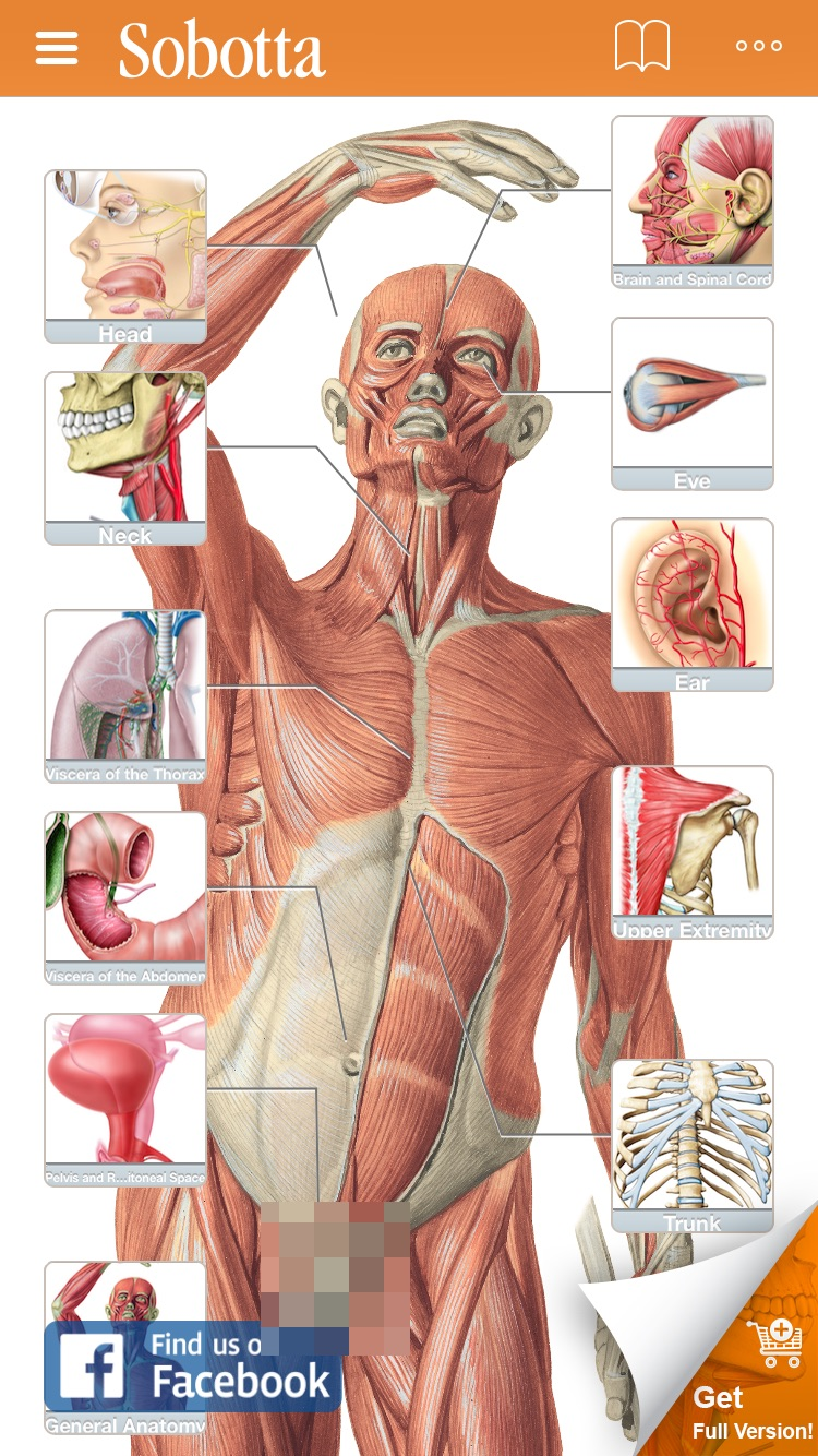 Sobotta Anatomy Screenshot