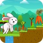 Rabbit Run - Endless Adventure Runner Game icon
