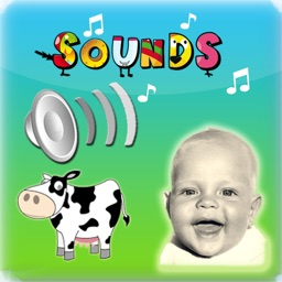 Kids Sounds - Moo Box Quiz