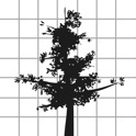 Yousuke Morimoto - Logo