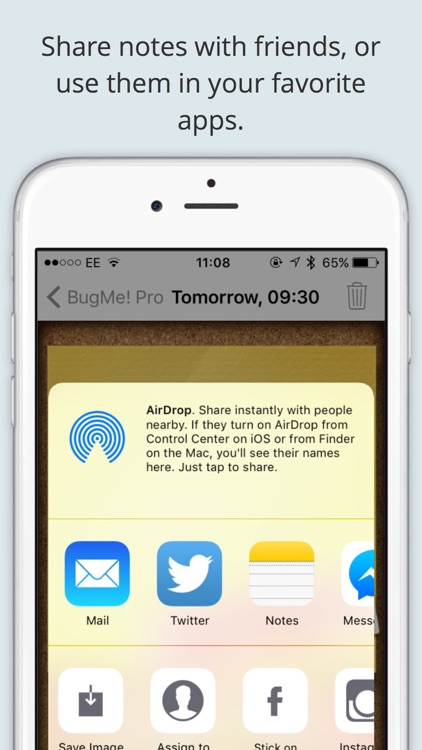 BugMe! Stickies Pro - Ink Notepad, Reminders and Alarms screenshot-3
