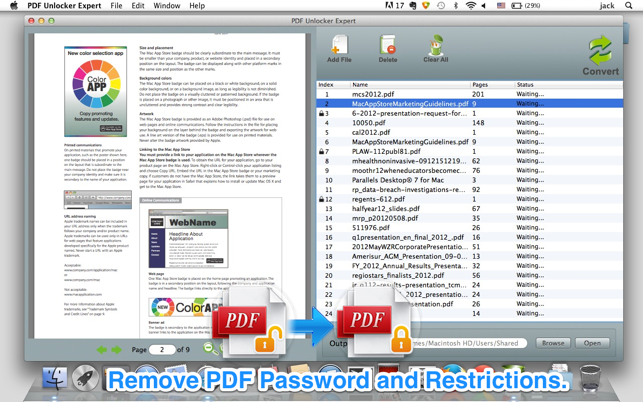 PDF Unlocker Expert Screenshot