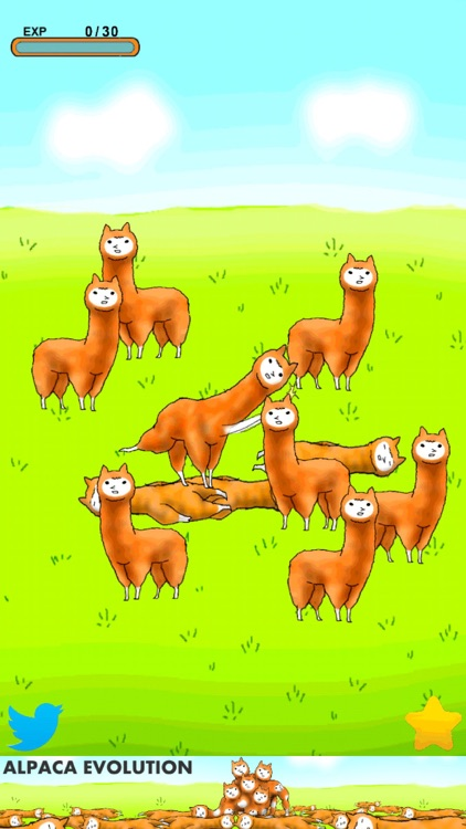 Alpaca Evolution