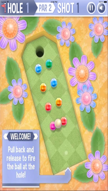 Mini Golf Garden screenshot-2