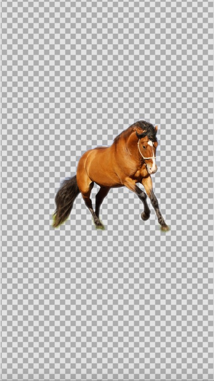 KnockOut Pro- Professional Background Remover & Sticker Maker screenshot-0
