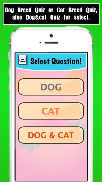 Dog Breed Quiz, Cat Breed Quiz