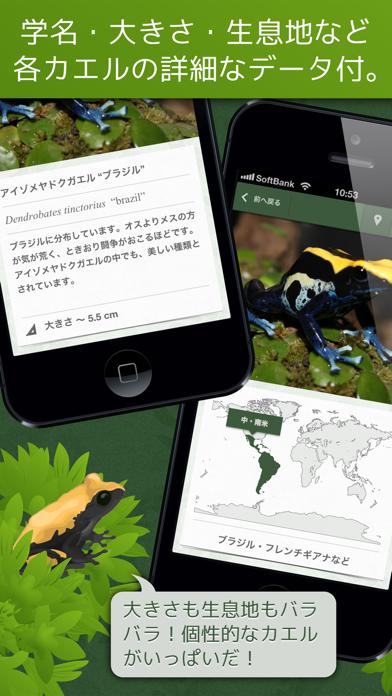 あわしま世界のカエル図鑑FREEのおすすめ画像3