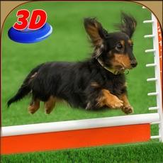 Activities of Dog Show Simulator 3D: Train puppies & perform amazing stunts