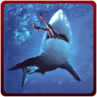 Angry Shark Attack Simulator – Killer predator simulation game icon