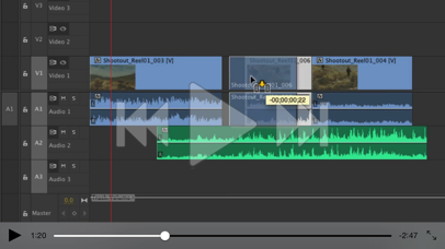 Intro Course For Premiere Pro screenshot four