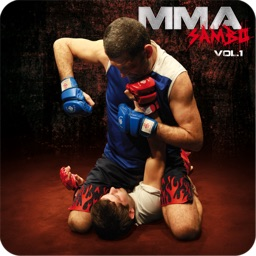 MMA - vol. 1 - Fighting Techniques