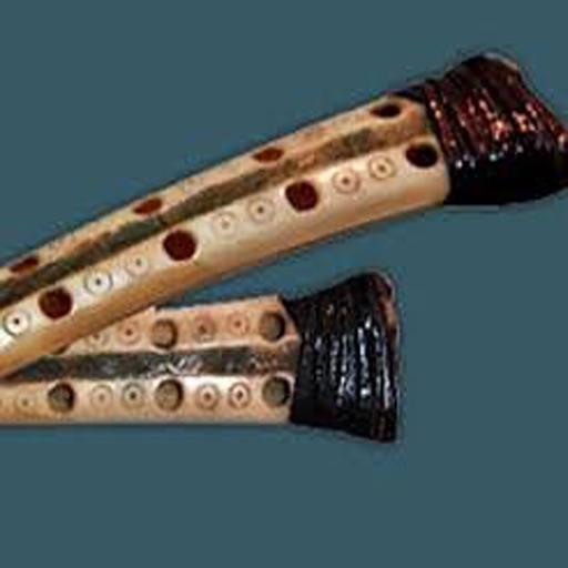 kurdi organ musical instrument simulator