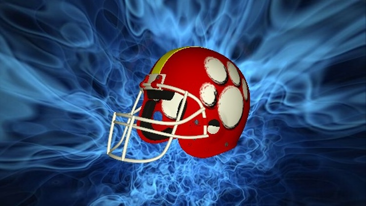 Football Helmet 3D - Design your helmet decals screenshot-0