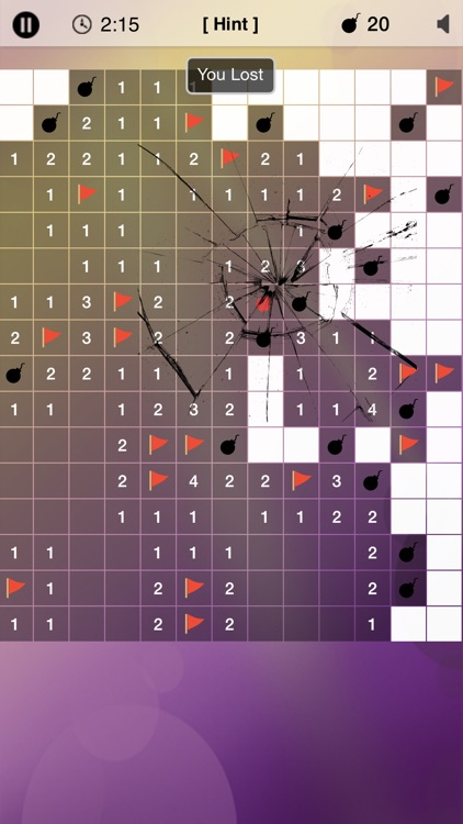 Minesweeper Puzzle screenshot-1