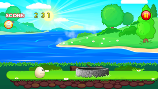 Egg Drop Run-1