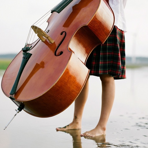 Learn To Play Double Bass