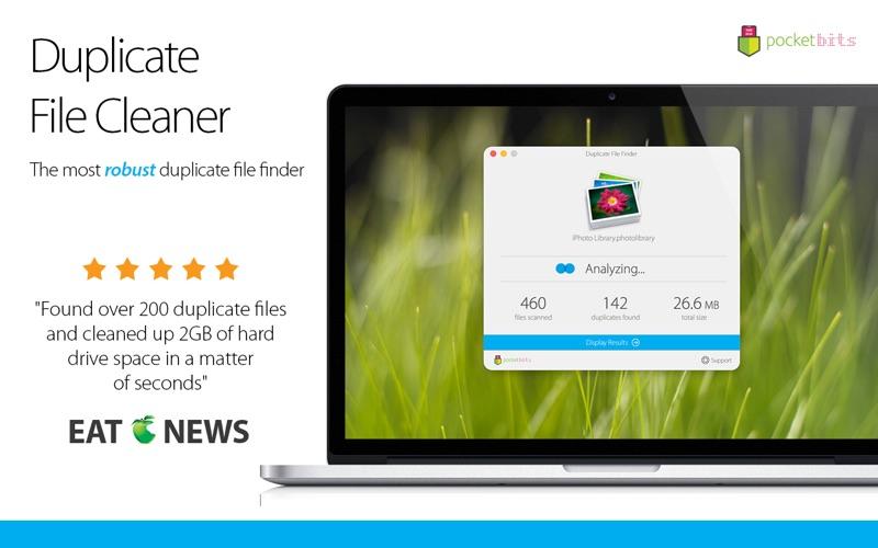 Duplicate File Cleaner Screenshot