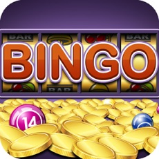 Activities of Bingo Maximum Pro