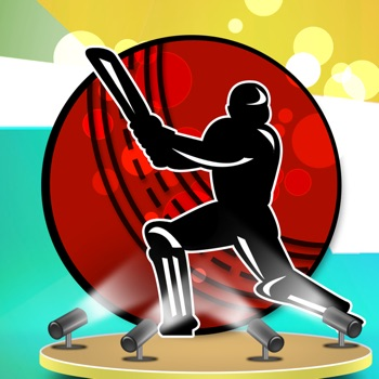 Crazy Cricket World Cup 2015 For Cricket Lovers
