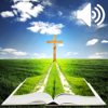 Andrew Blurton - Audio Bible - Biblia Cornilescu (The Holy Bible in Romanian)  artwork