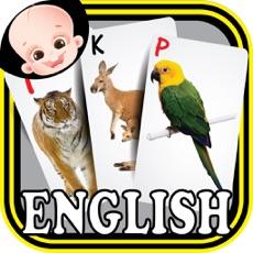 Activities of Kids safari jungle wild animals zoo & birds flashcards for preschool kindergarten baby