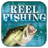 Codes for Reel Fishing Pocket Hack