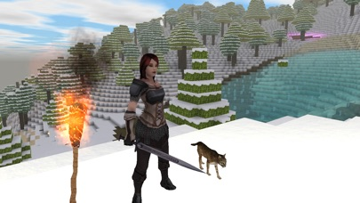 Block Story Premiumのスクリーンショット2