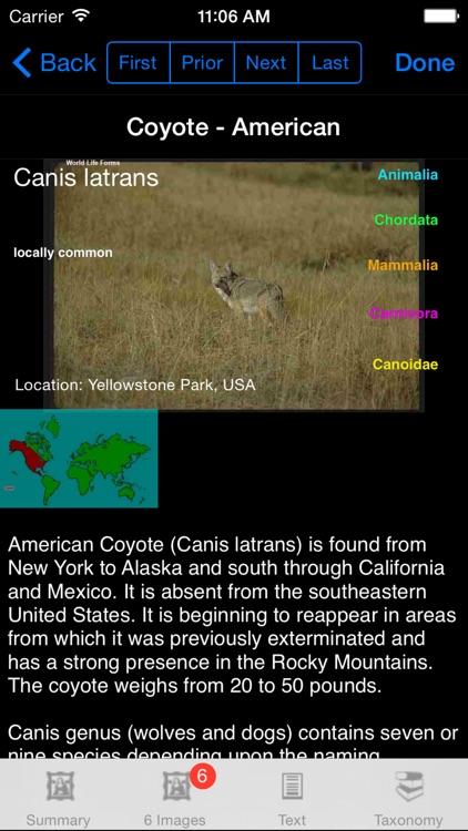 Mammals of North, Central & South America - A Mammal App screenshot-3