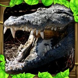 Wildlife Simulator: Crocodile