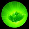 Plantas medicinais Lite