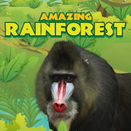 Amazing Rainforest Apple Watch App