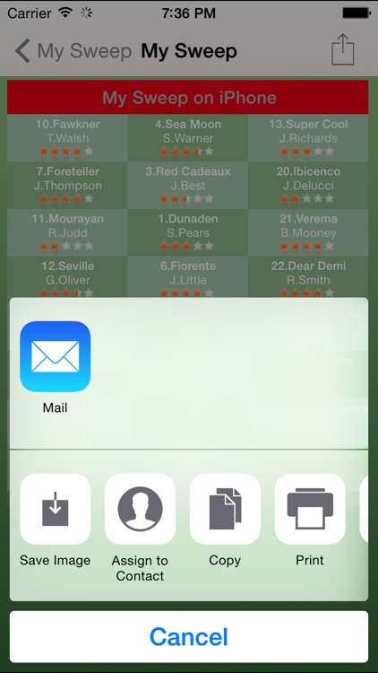 Melbourne Cup Sweep screenshot-4
