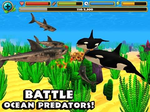 Скачать Wildlife Simulator: Shark