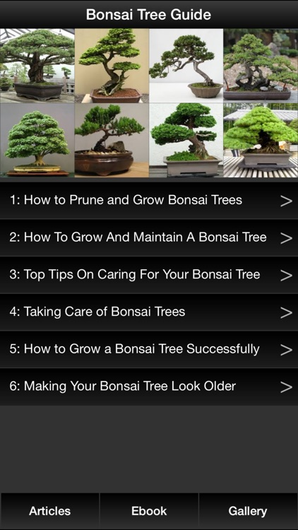 Bonsai Tree Guide - Everything You Need To Know Bonsai Tree ! screenshot-0
