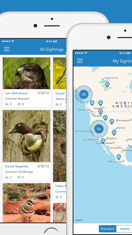 iKnow Birds 2 PRO - The Field Guide to the Birds of Europe screenshot-4