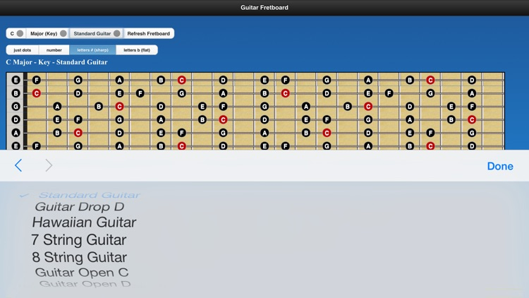 Guitar Chords n Scales screenshot-4